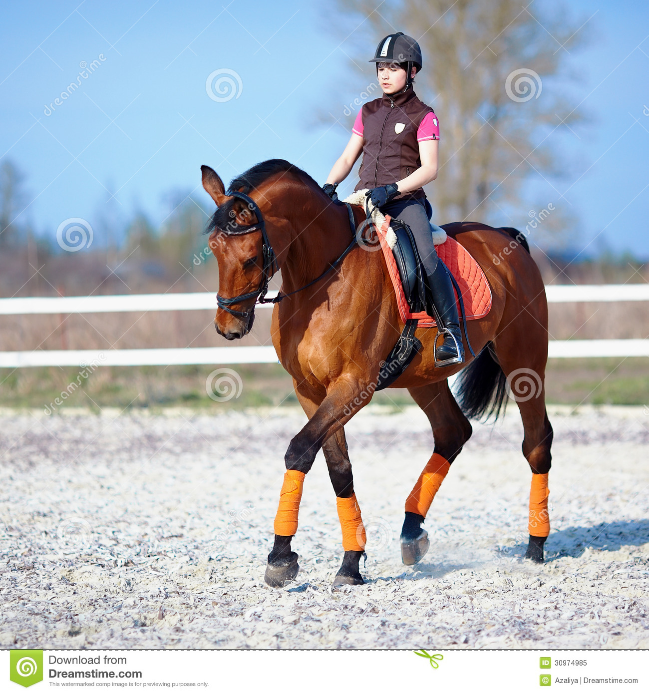 The Horsewoman On A Red Horse Royalty Free Stock Photo ...