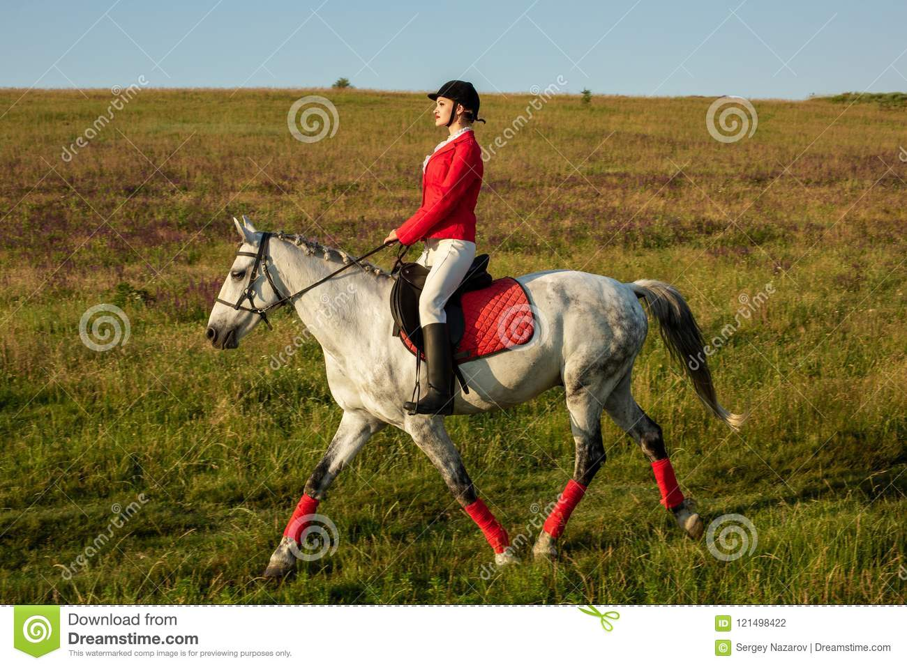 The Horsewoman On A Red Horse Horse Riding Horse Racing Rider On A Horse Stock Photo Image Of Mammal Bridle 121498422
