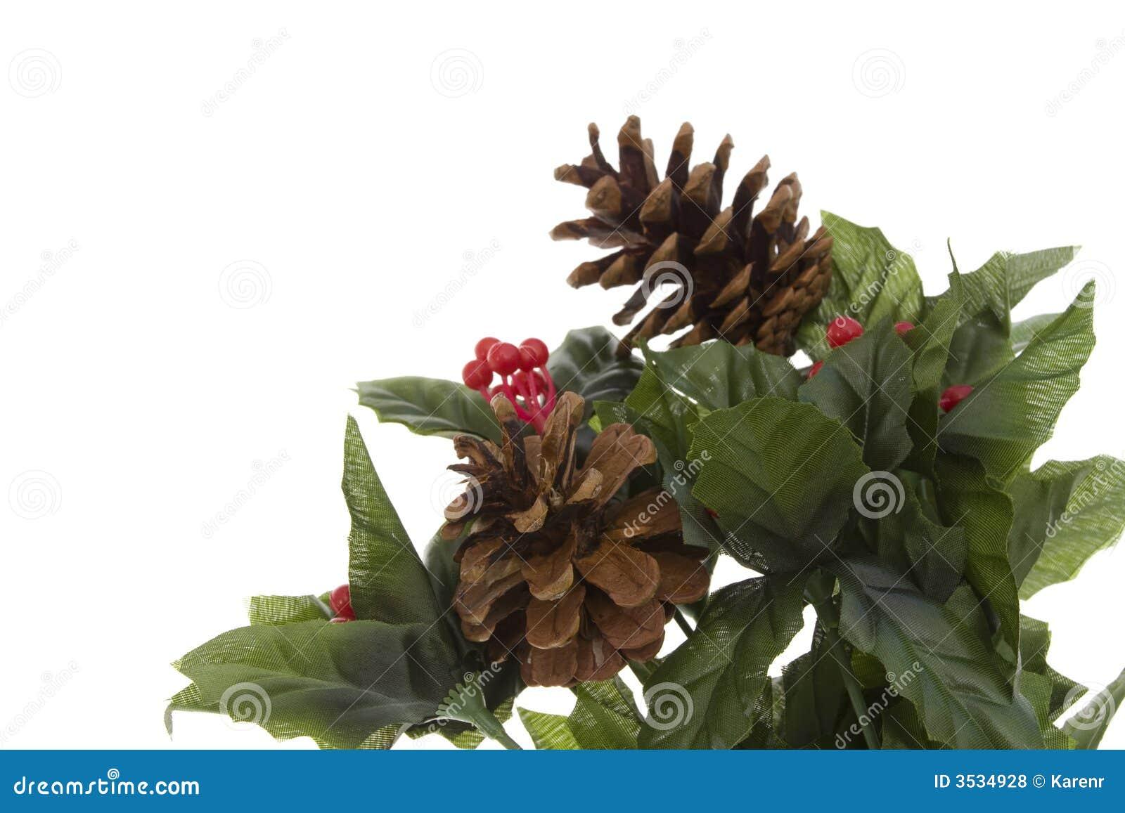 Hortaliças do Natal