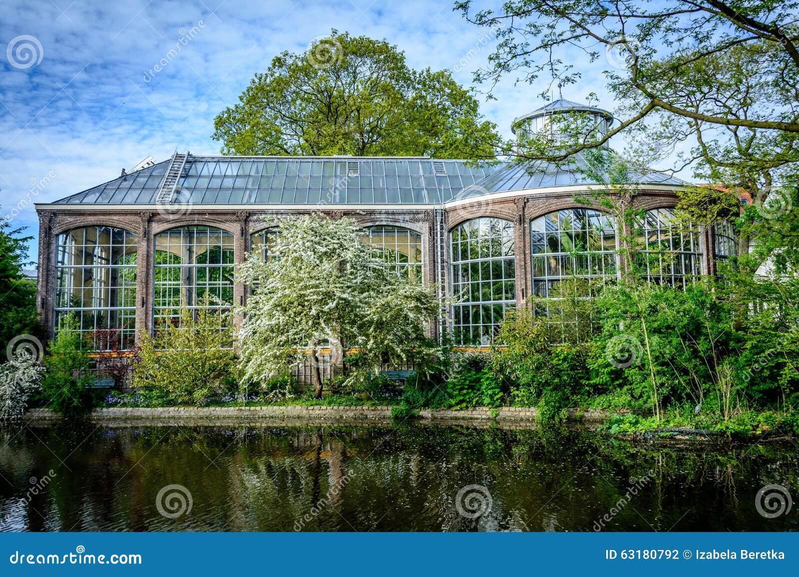 Botanische Tuin Amsterdam : Hortus botanicus amsterdam stock foto afbeelding bestaande uit