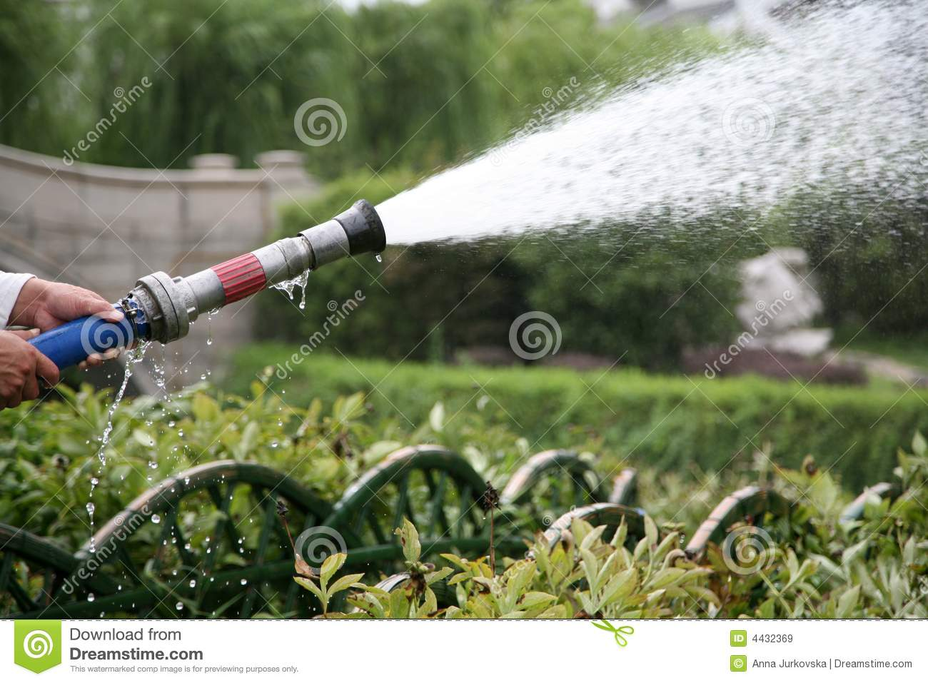 Hose spray image