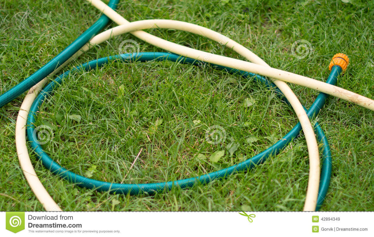 Hose For Watering Of Lawn Water Stock Photo Image 42894349
