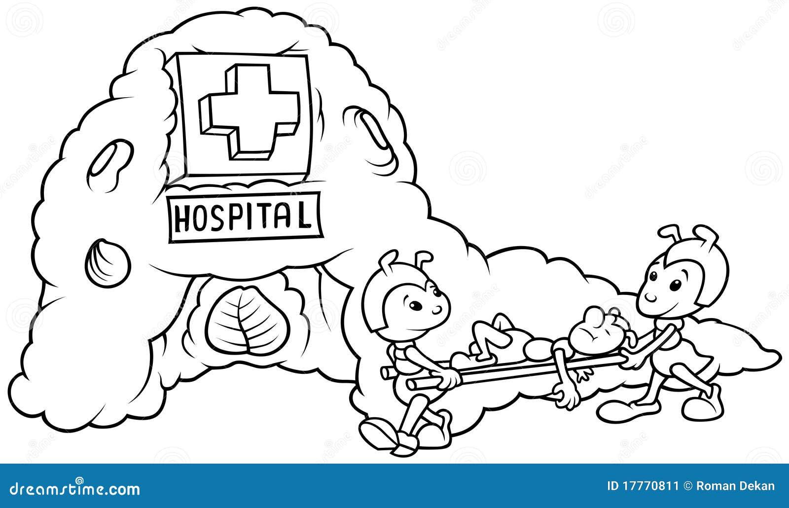 Hospital de la hormiga