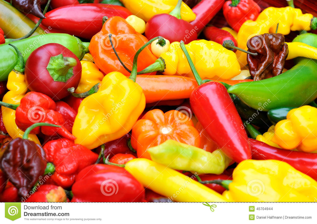 Hot chili peppers stock photo image 45704944 for Cucinare jalapenos