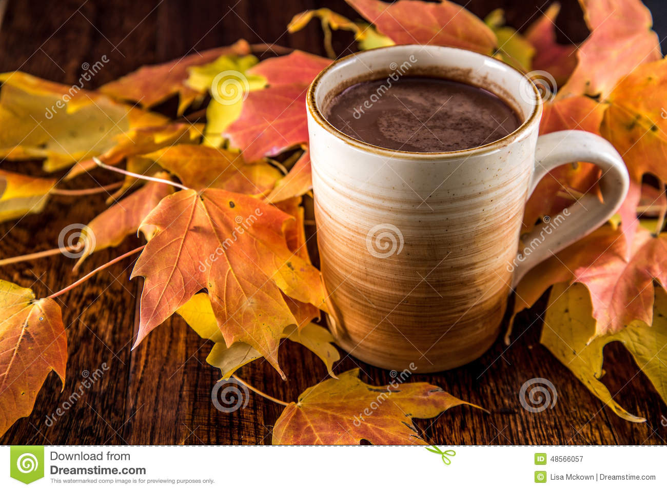 Hot Chocolate In The Fall Stock Image Image Of Outdoors 48566057