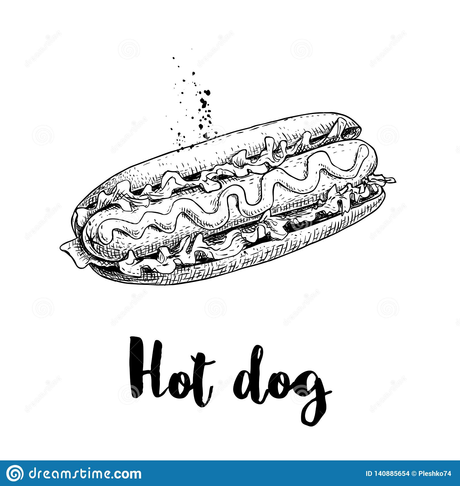 Hot dog nakreślenia ręka rysująca Fast food retro ilustracja Świeża babeczka z piec na grillu kiełbasy, musztardy, ketchupu i sał