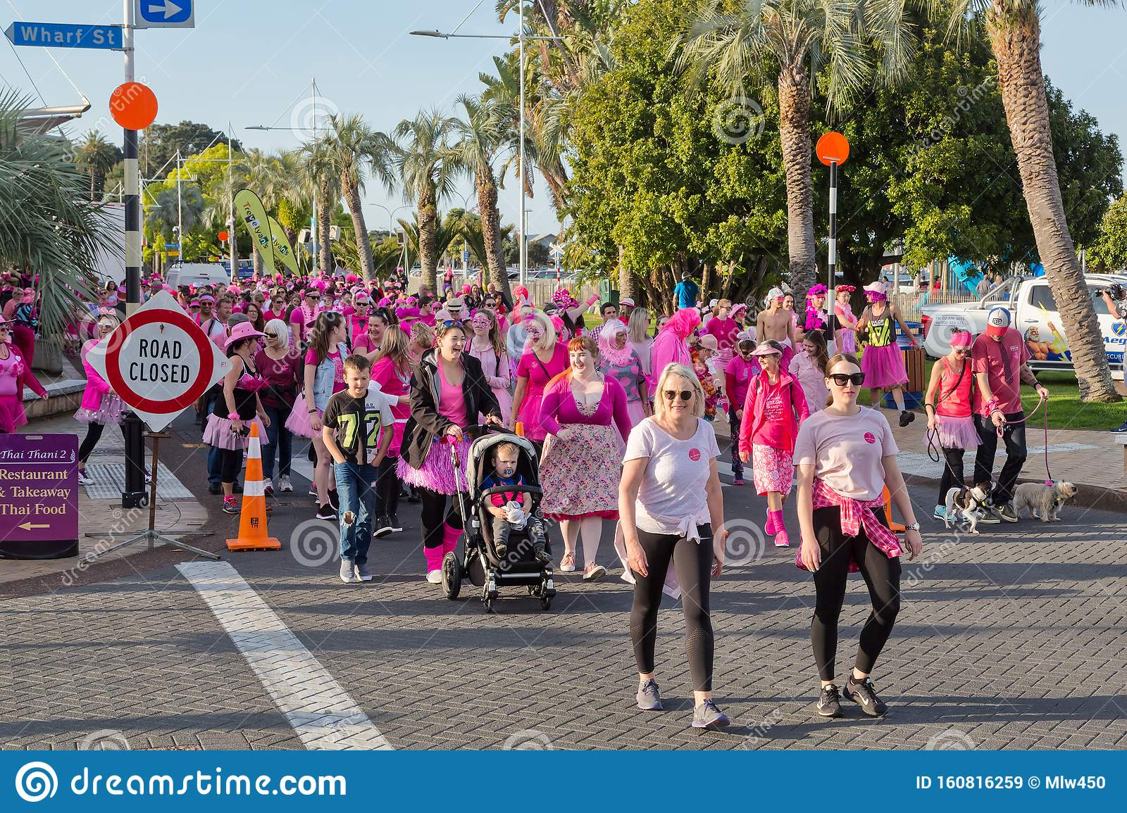 A Crowd Of People In Pink Marching Against Breast Cancer Editorial Stock Image Image Of Marching Cause 160816259