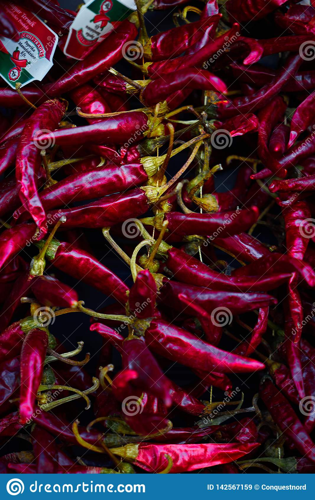 Hot red peppers hanging on the wall