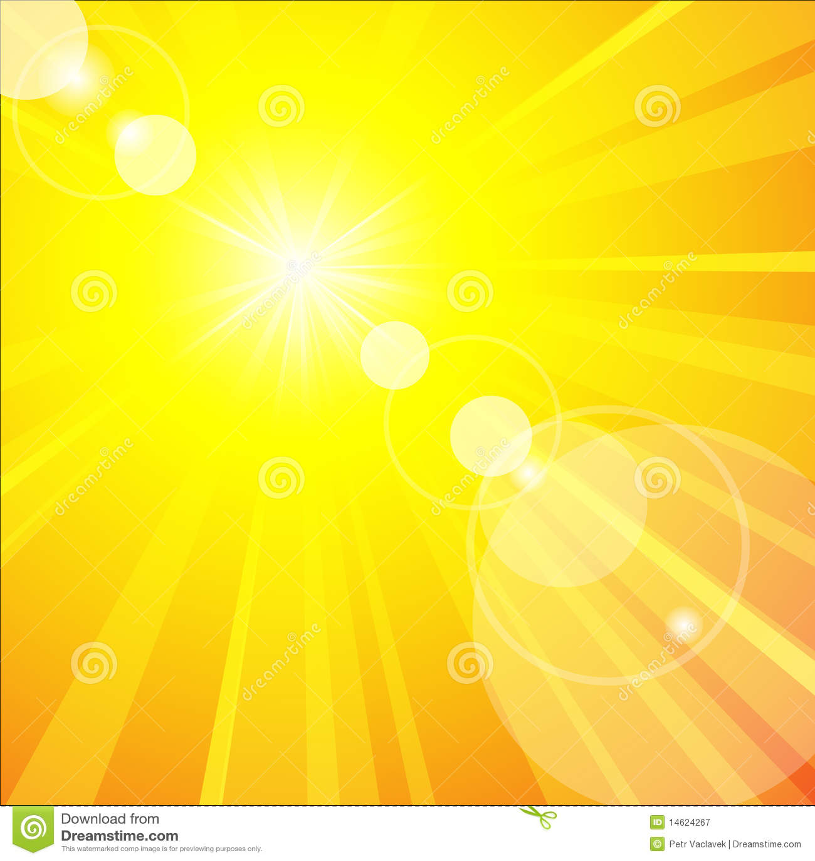 Heliopsis Summer Sun: Vibrant Yellow All Summer