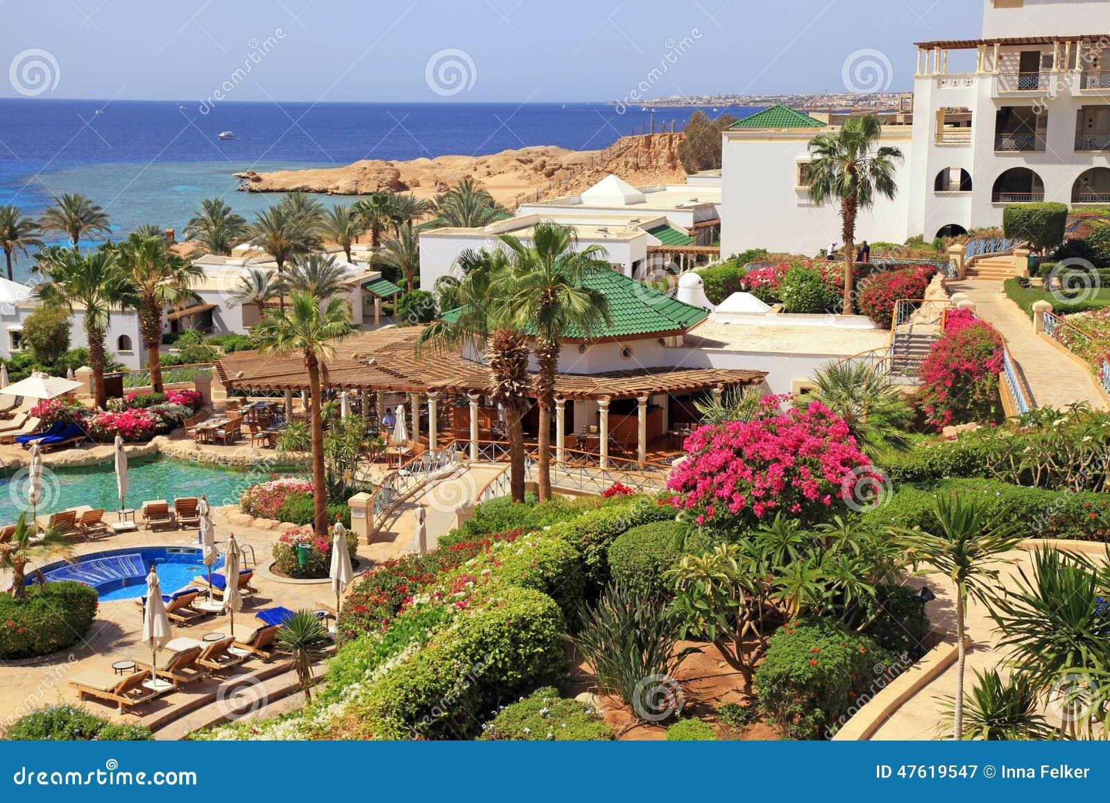 Hotel Di Località Di Soggiorno Di Lusso Tropicale, Sharm El Sheikh ...