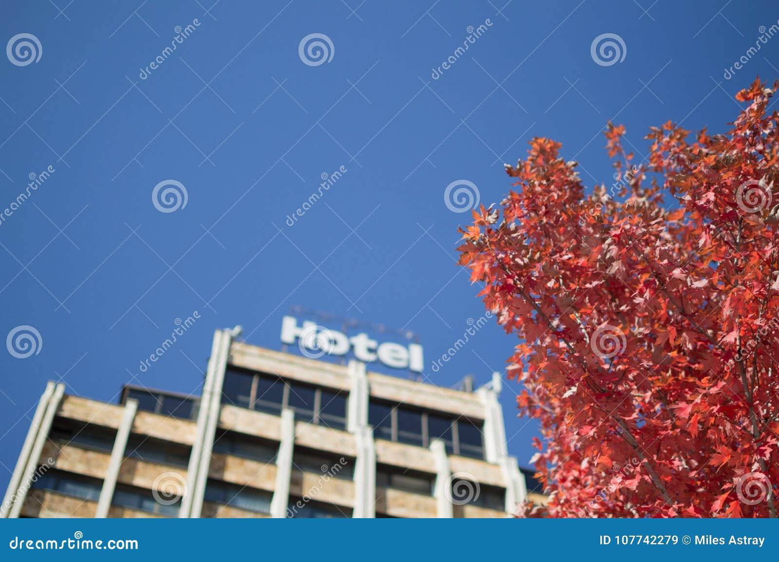 Hotel en Autumn Foliage in Pristina, Kosovo