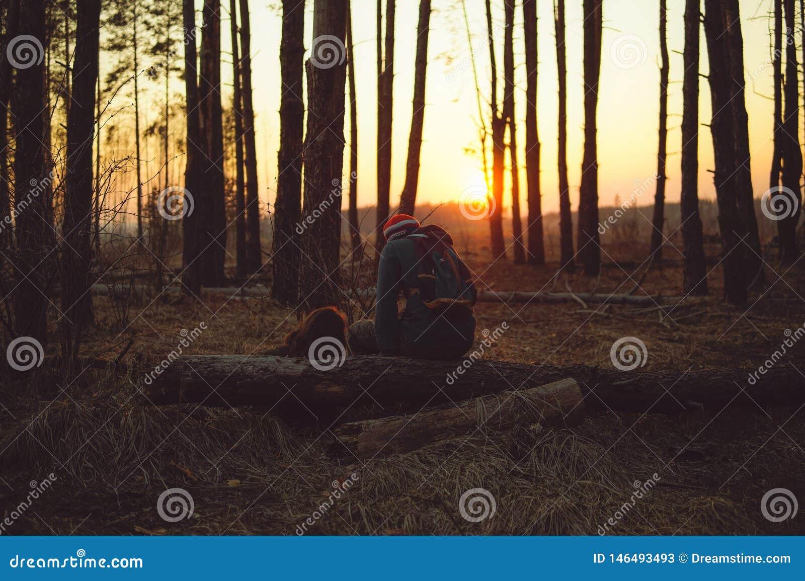 Houdend van paar in het avond bos