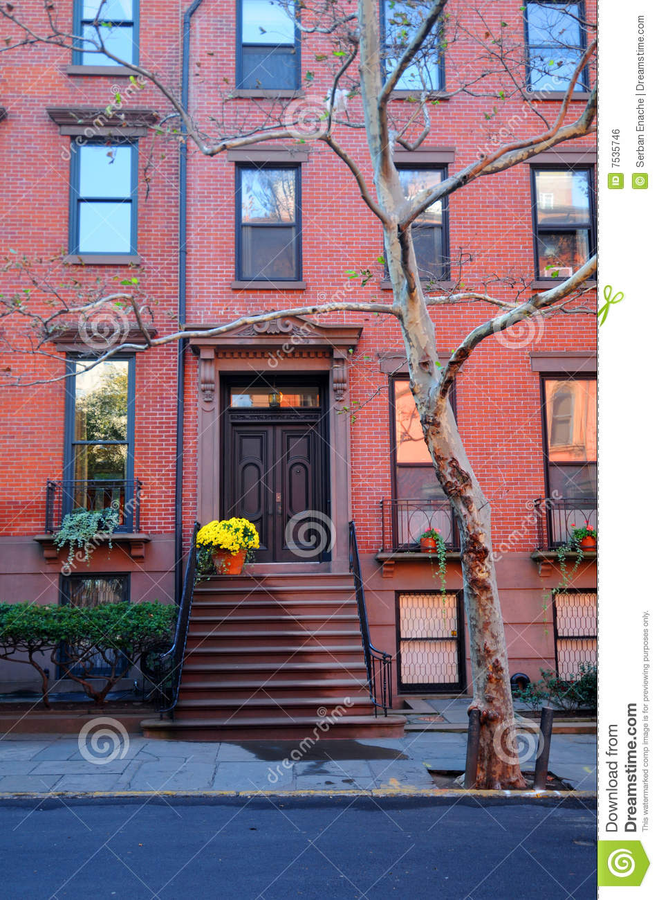 House in brooklyn royalty free stock image image 7535746 for Buying a home in brooklyn
