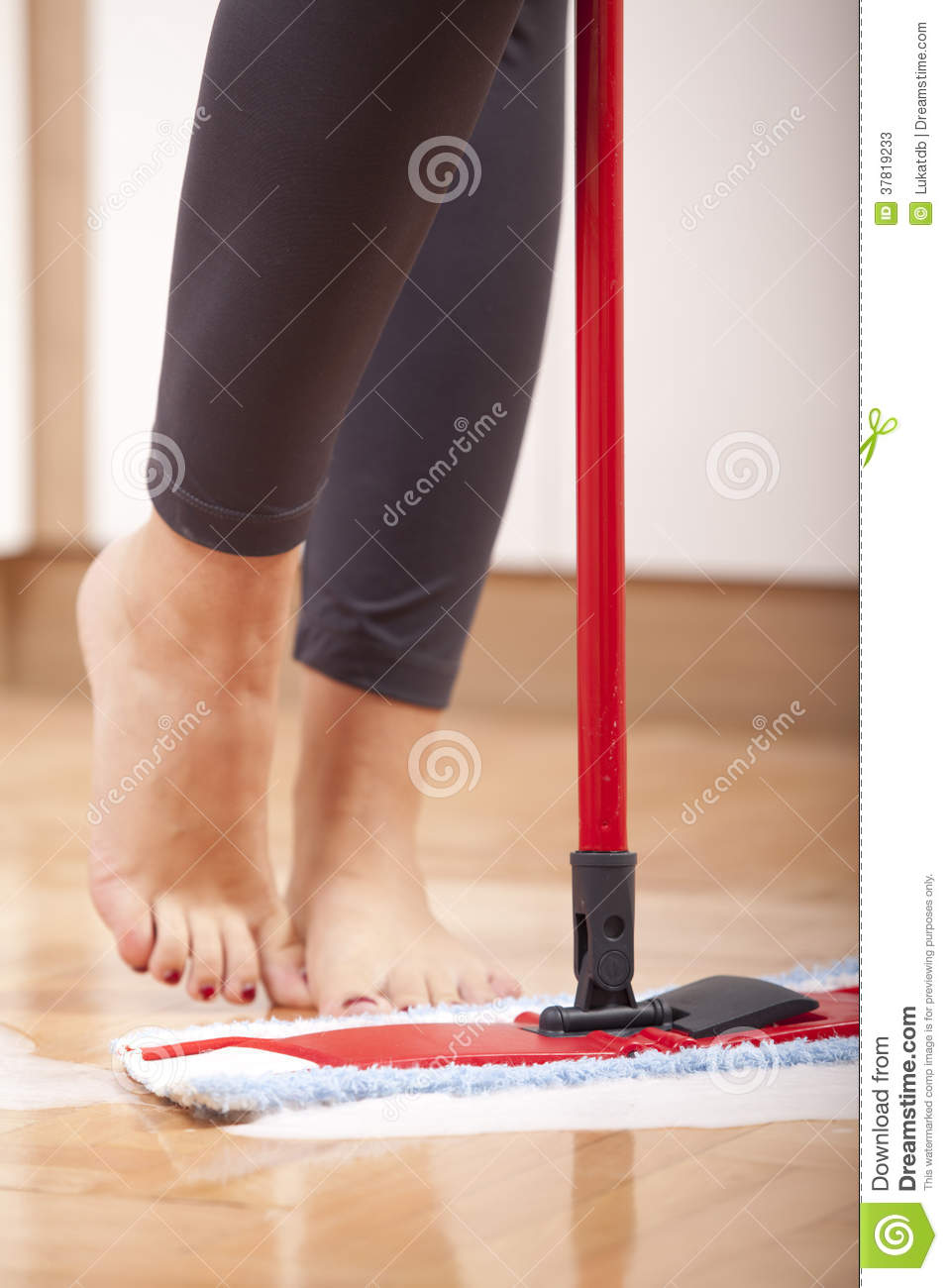 House cleaning stock photos image 37819233 for House cleaning stock photos