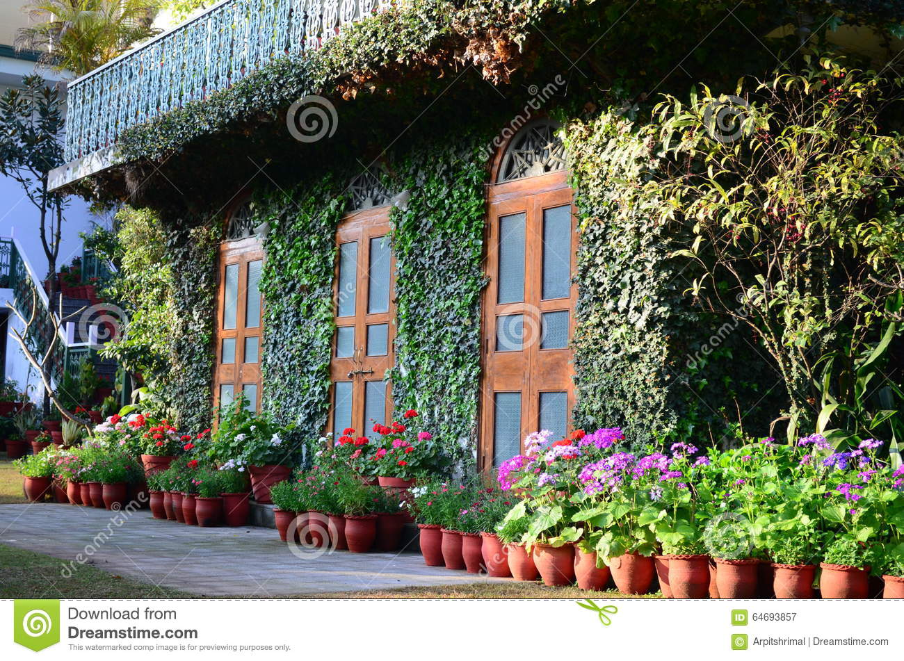 House covered with plants and flowers stock photo image - Casas con jardines bonitos ...