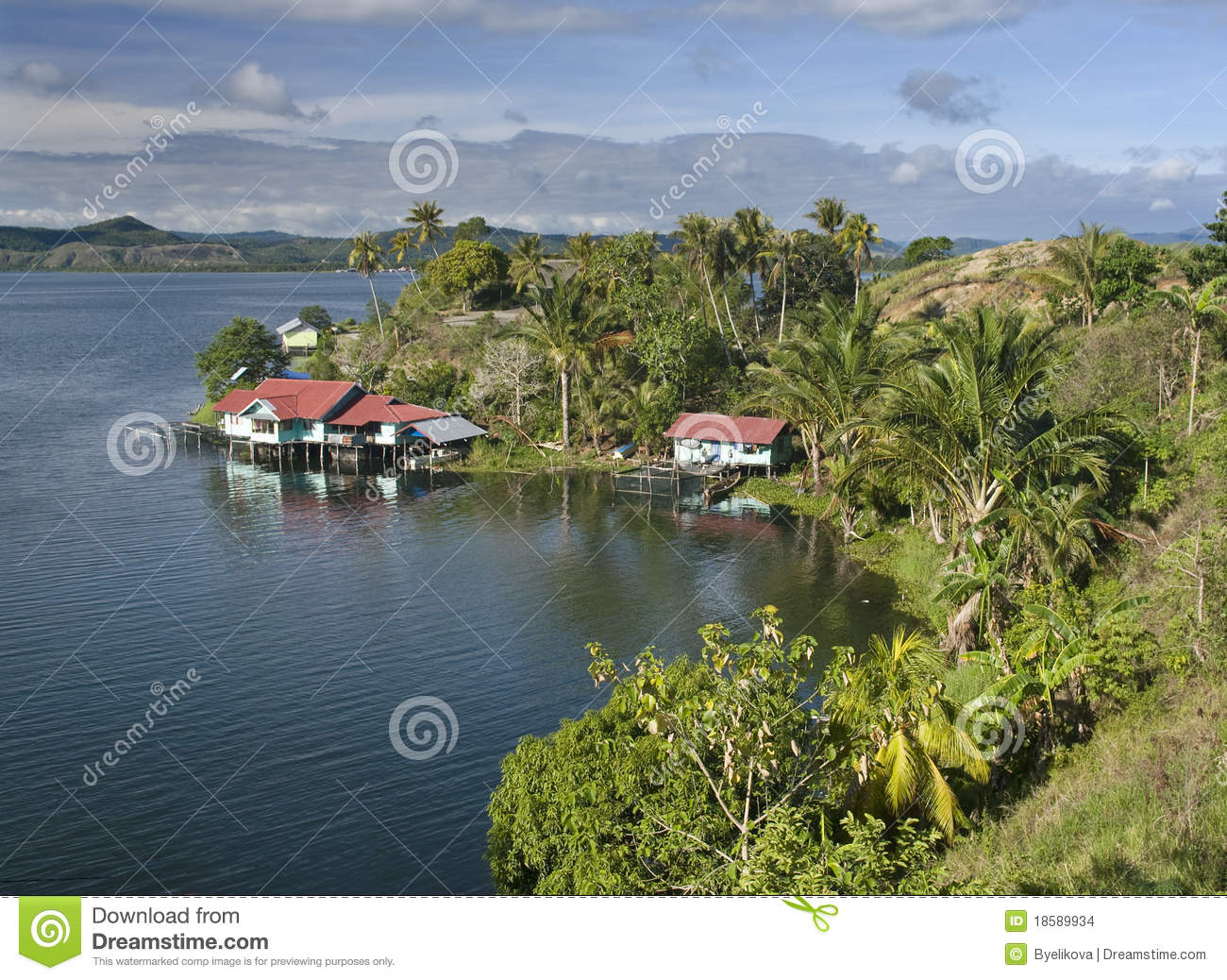 The House Established On Piles Stock Images Image 18589934