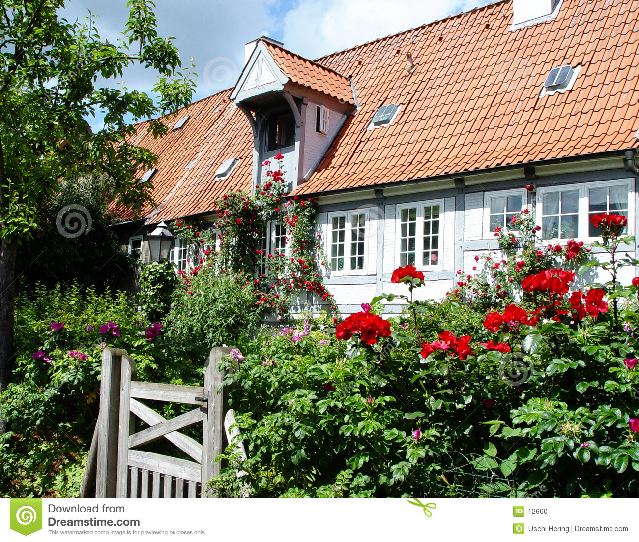 House with flower landscaping