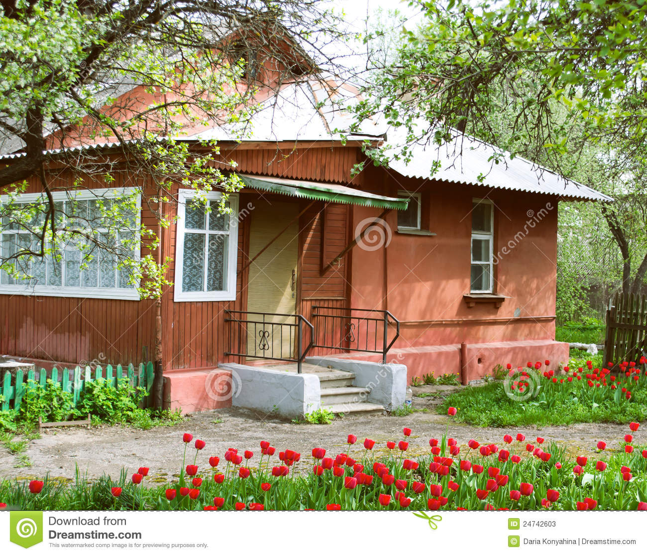 House and garden with tulips