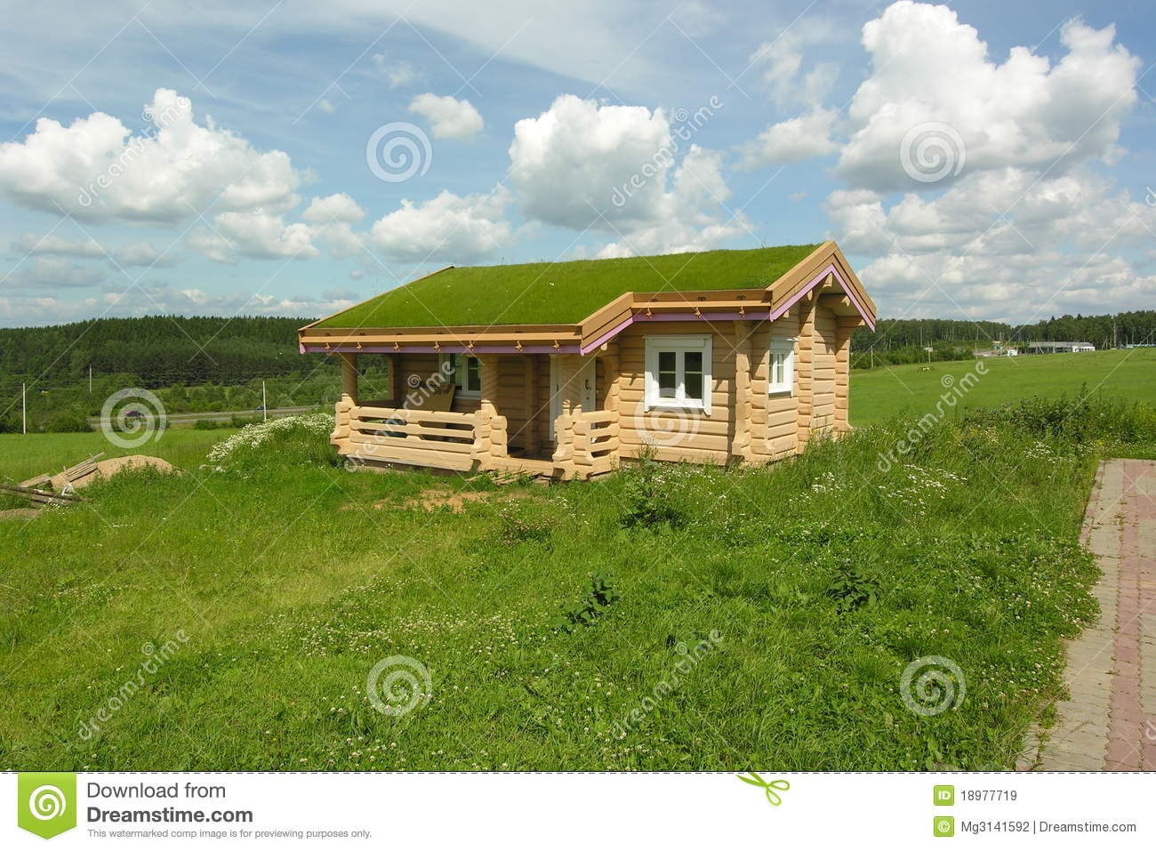 house with green roof stock image image of blue grass