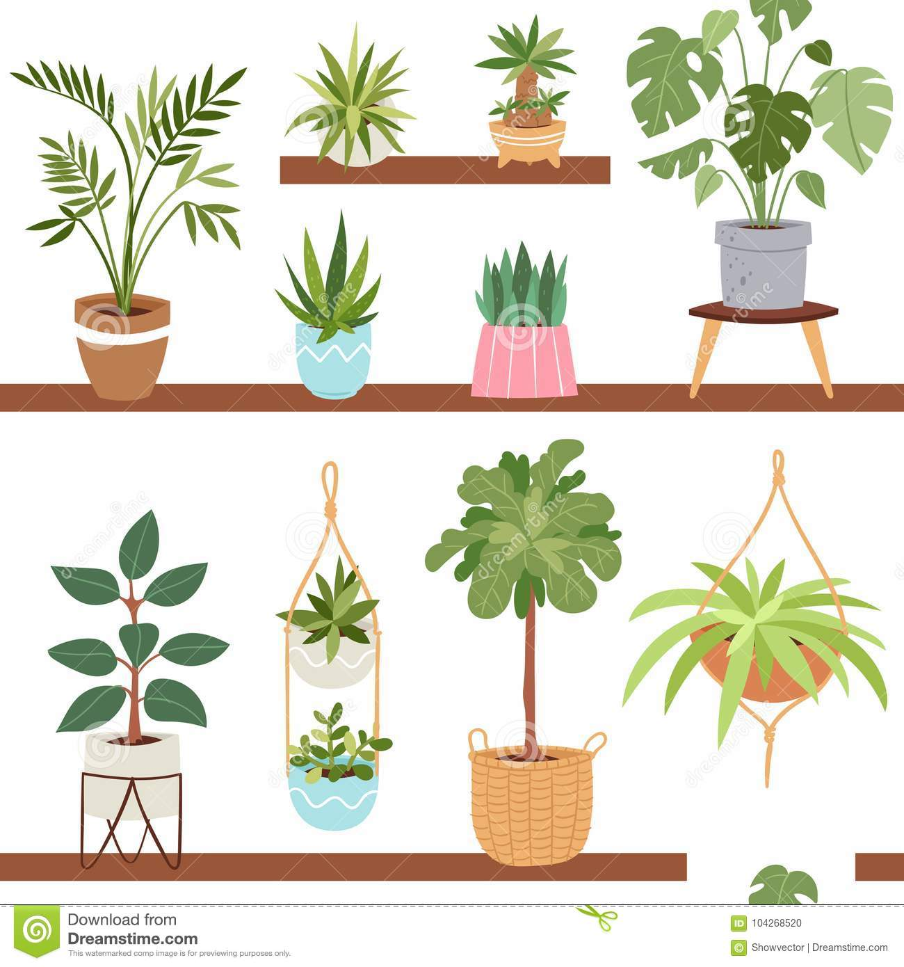 House Indoor Vector Plants And Nature Homemade Flowers In