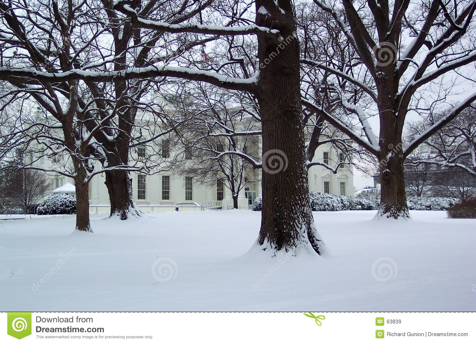 House january white