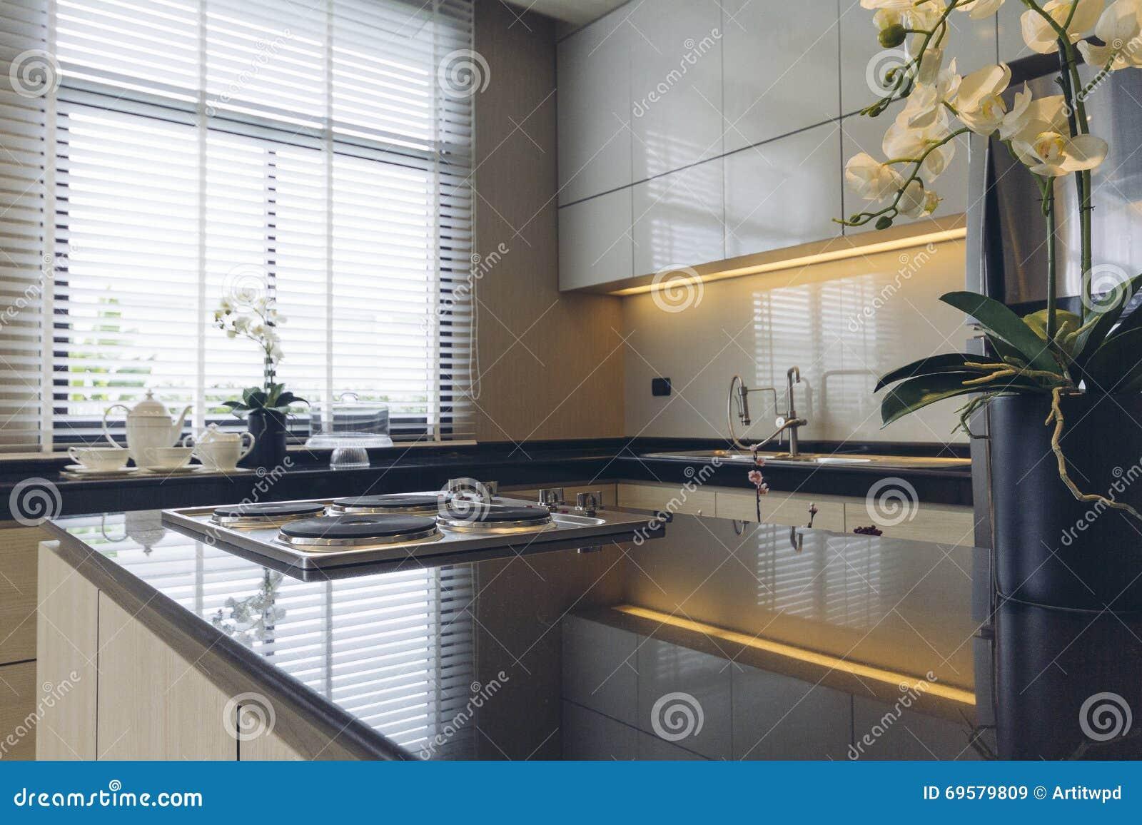 House Modelo Moderno Italiano Cozinha Imagem De Stock Imagem De