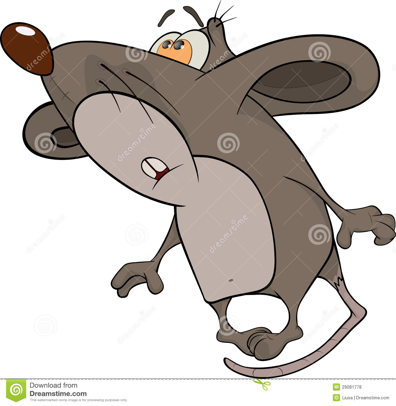 house mouse cartoon royalty free stock photos image