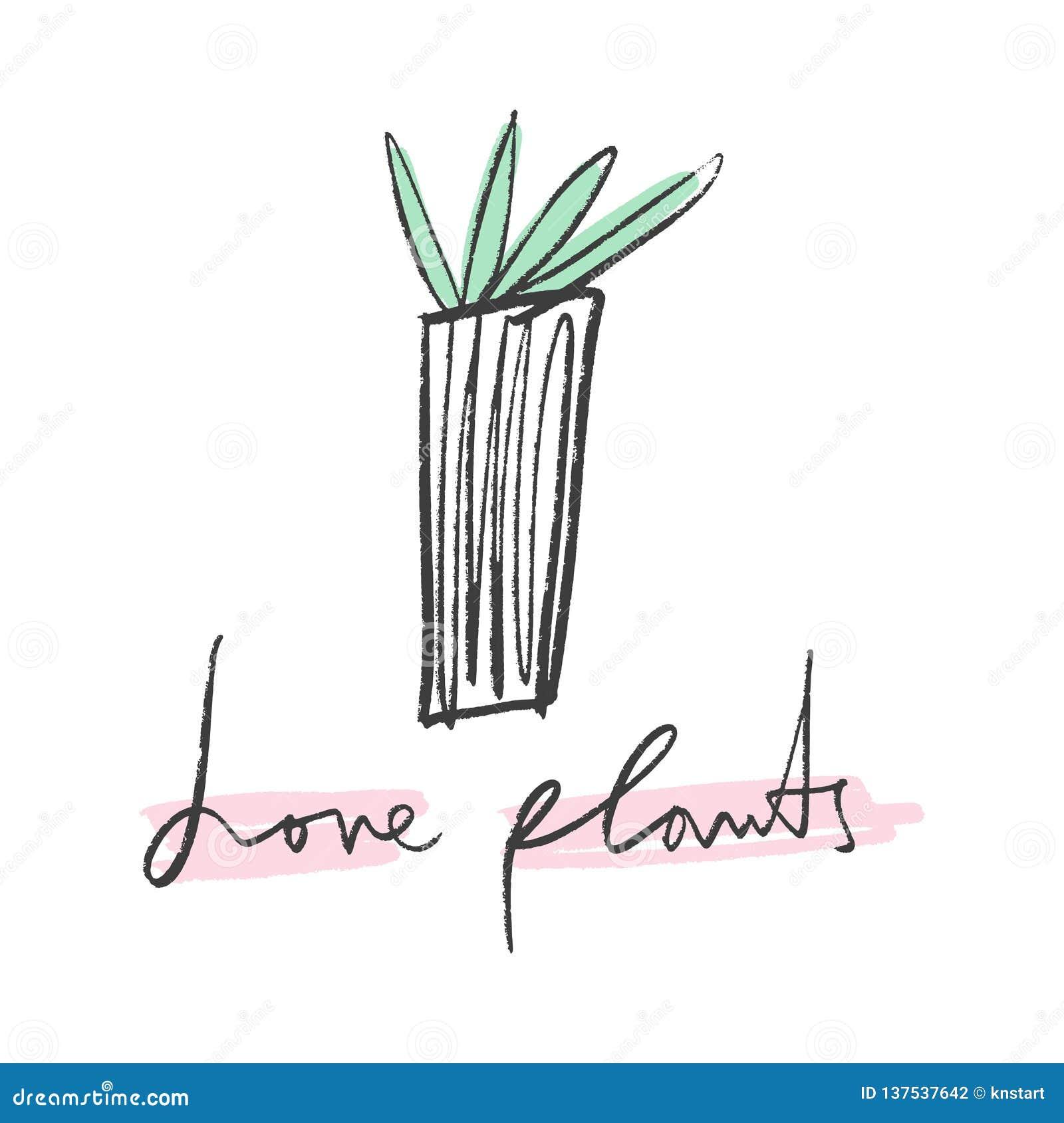 House plants in color, hand drawn illustration. Interior design