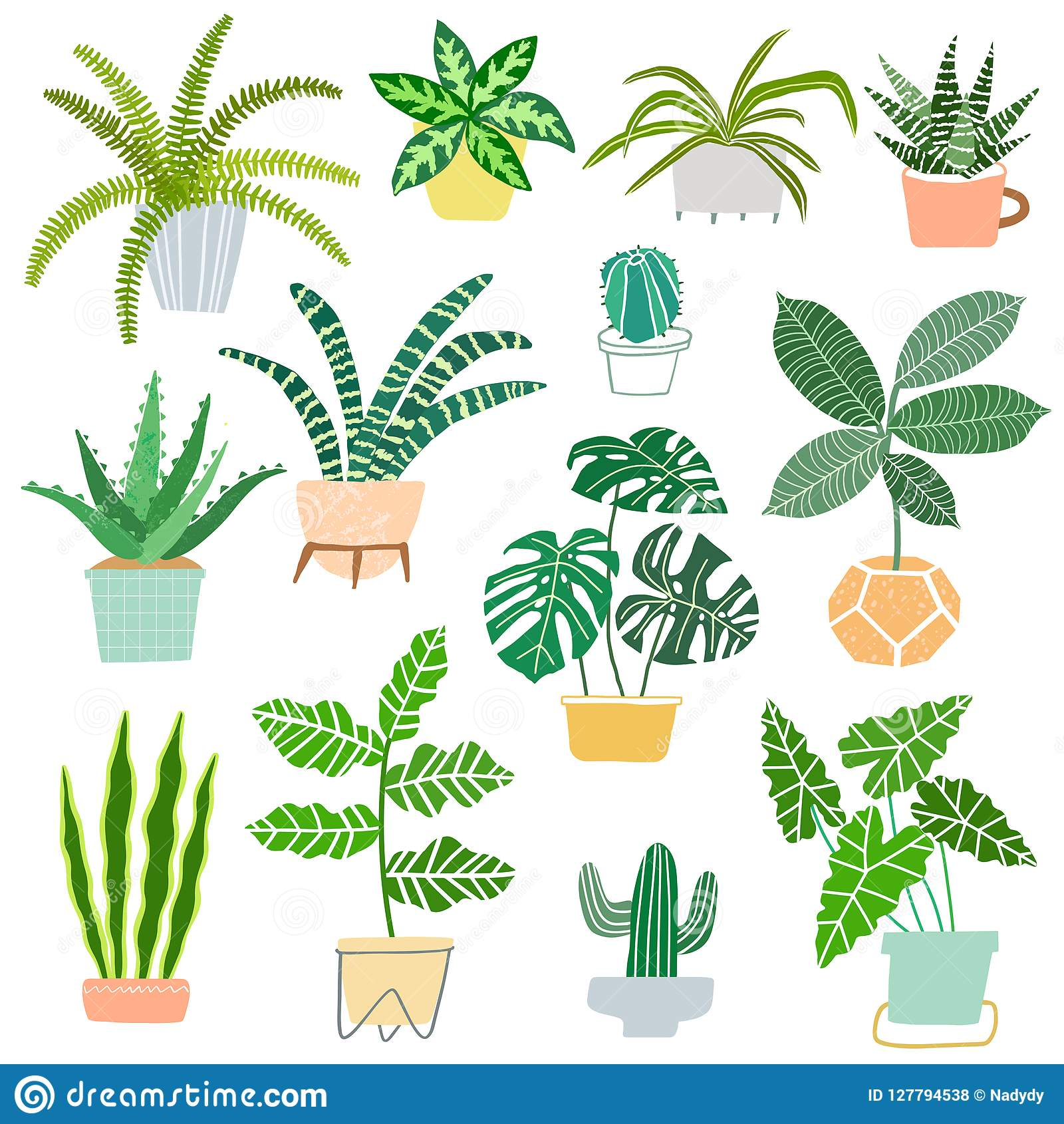 House Plants Pot Vector Illustration Indoor House Plants Isolated On White Background Stock Vector Illustration Of House Cactus 127794538