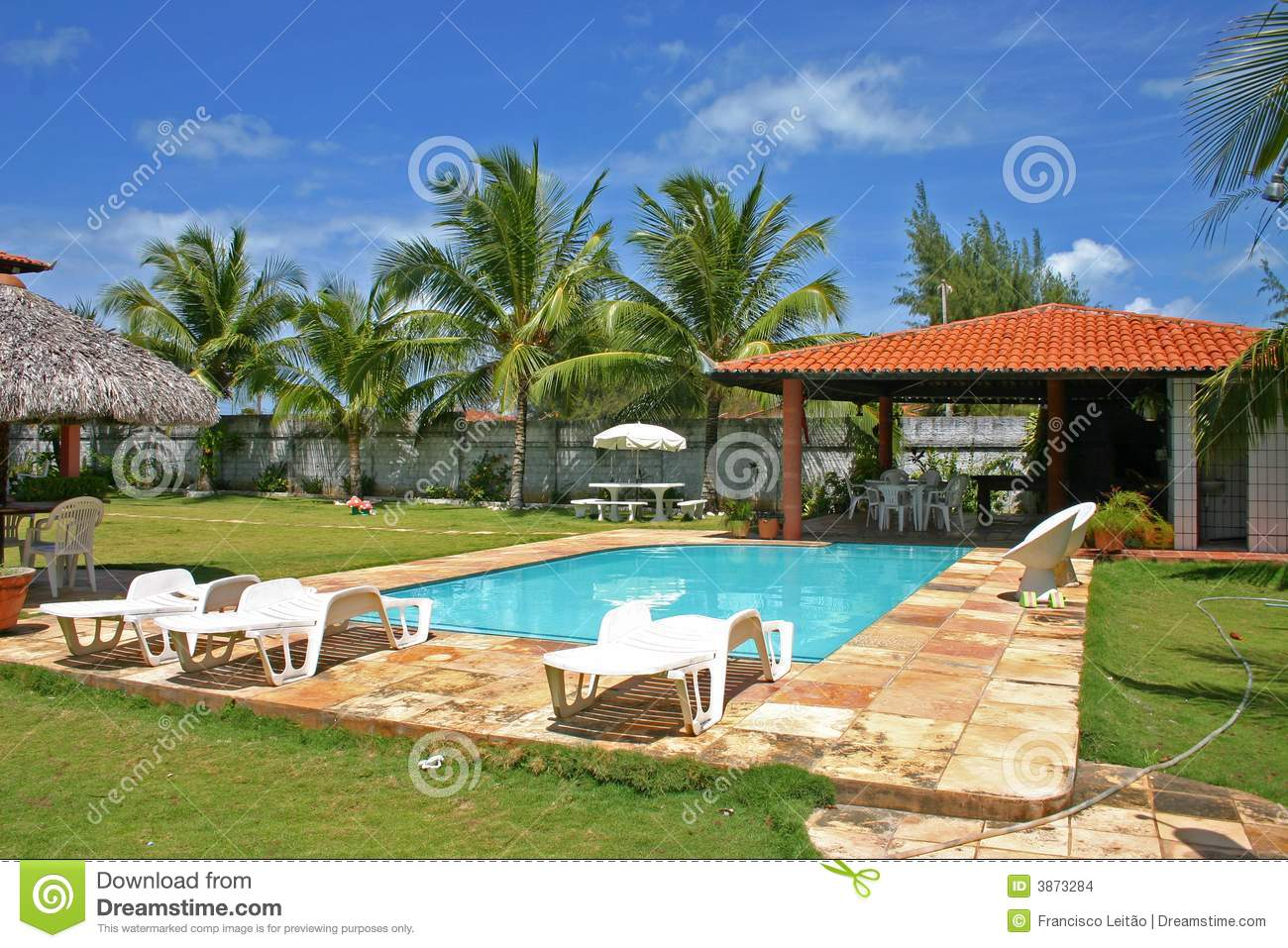 House pool with palmtrees and grass