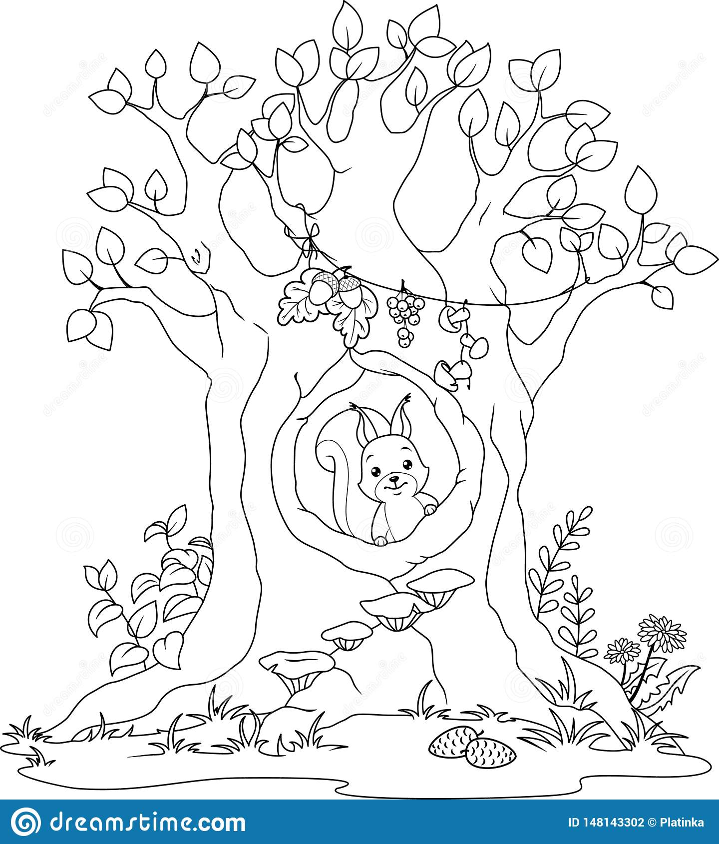Squirrel coloring page | Free Printable Coloring Pages | 1689x1440