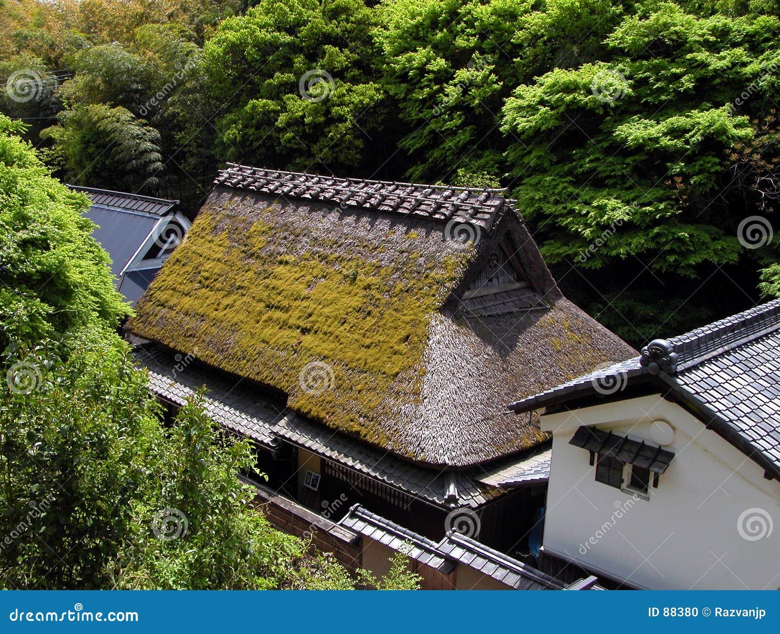 House tradycyjnego