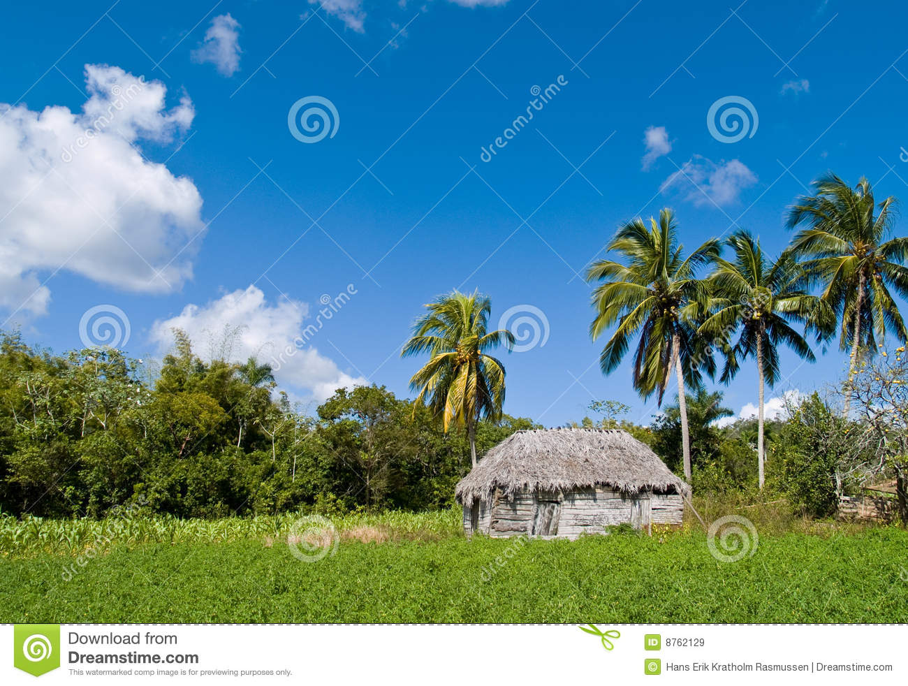 House in tropical landscape