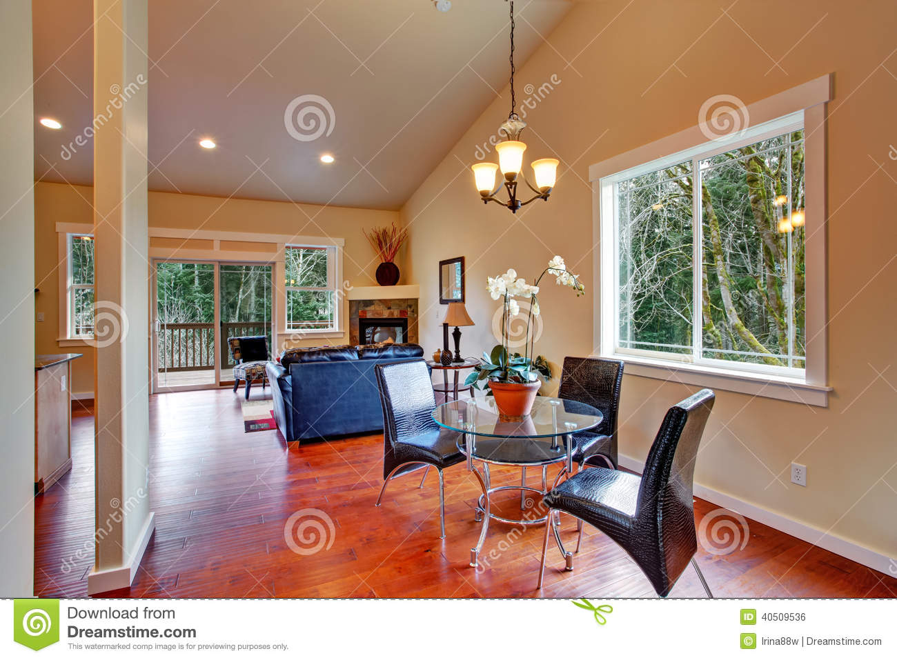 vaulted living room house with vaulted ceiling open floor plan stock photo 10687