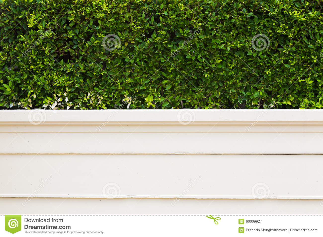 Wall Of House And Small Garden Stock Photo