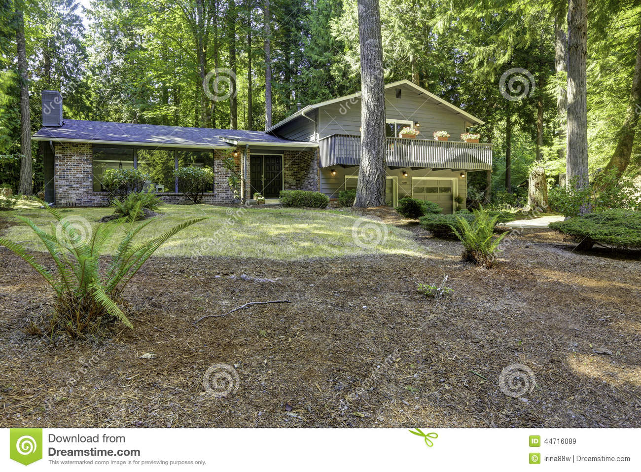 House in the woods summer time in washington state stock photo image 44716089 - The house in the woods ...