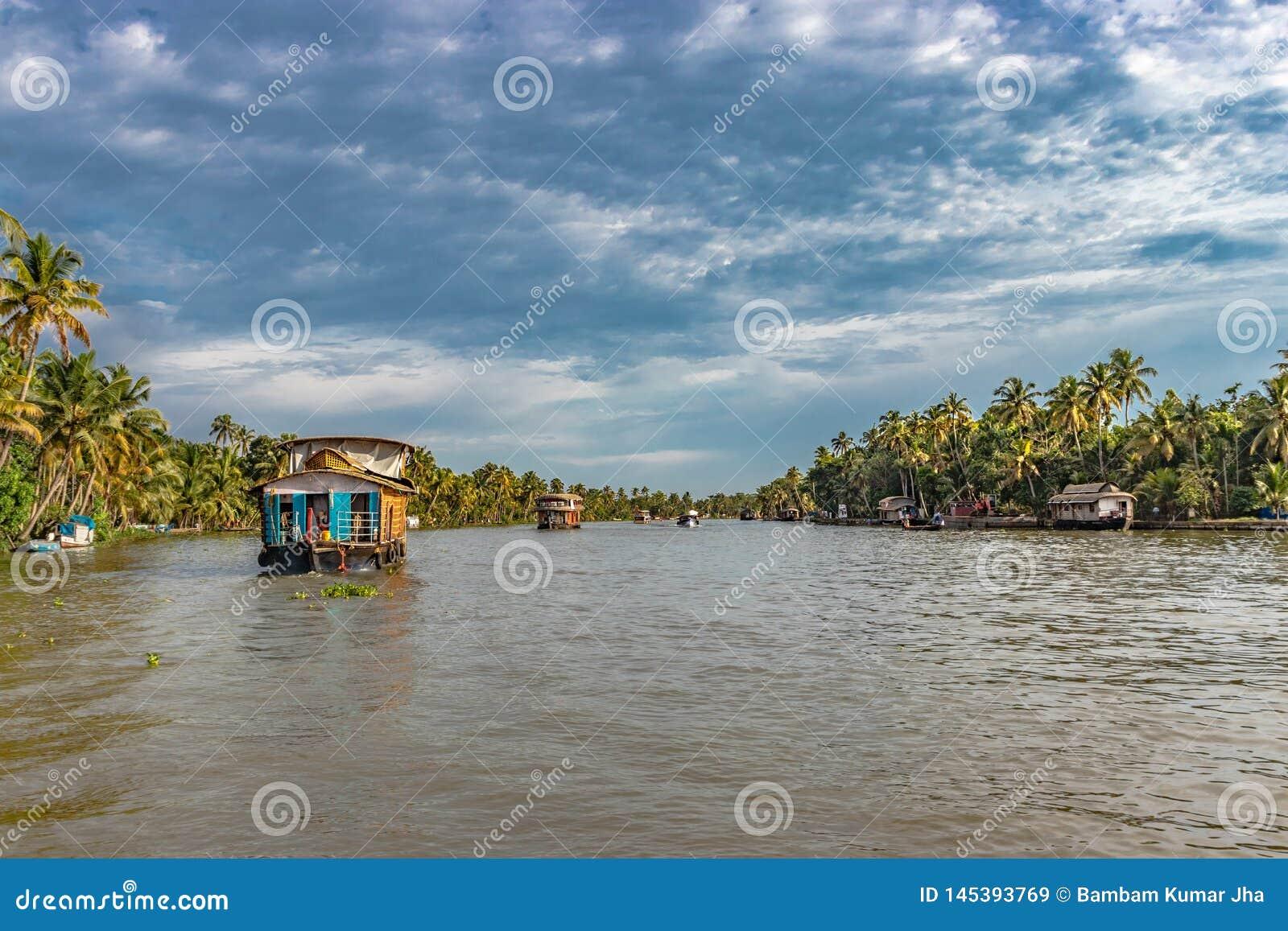 Houseboats w stojącej wodzie alleppey