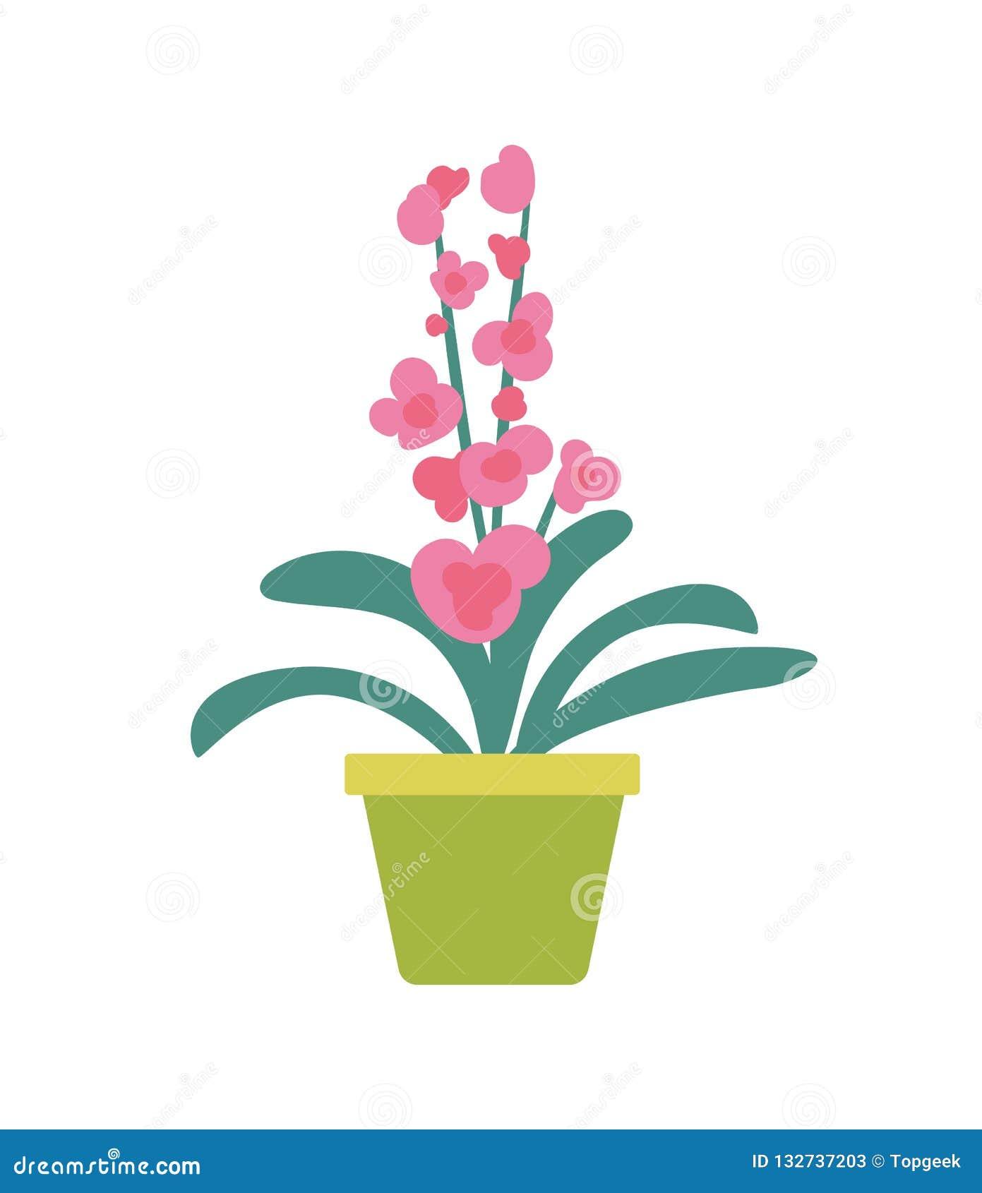 Houseplant απομονωμένο στο Flowerpot έμβλημα κινούμενων σχεδίων