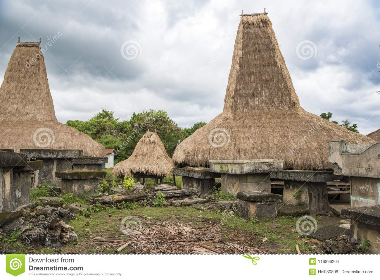 Typical houses with tall roofs, Kodi, Sumba Island, Nusa Tenggara