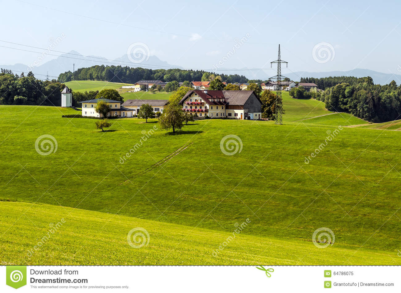 Houses surrounded by meadows