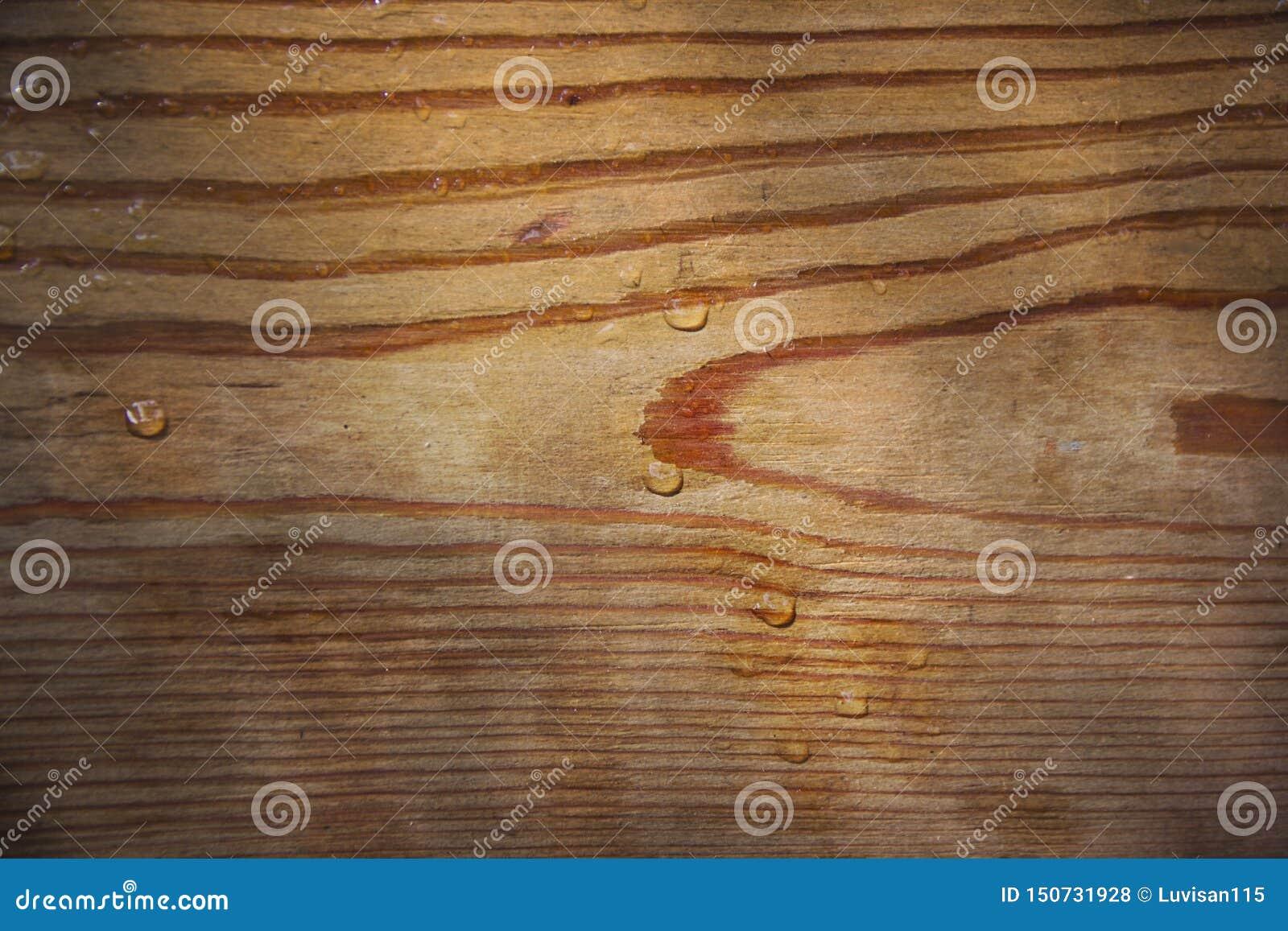 Hout, besnoeiing, houten natuurlijke textuurtekening, regendruppels, achtergrond