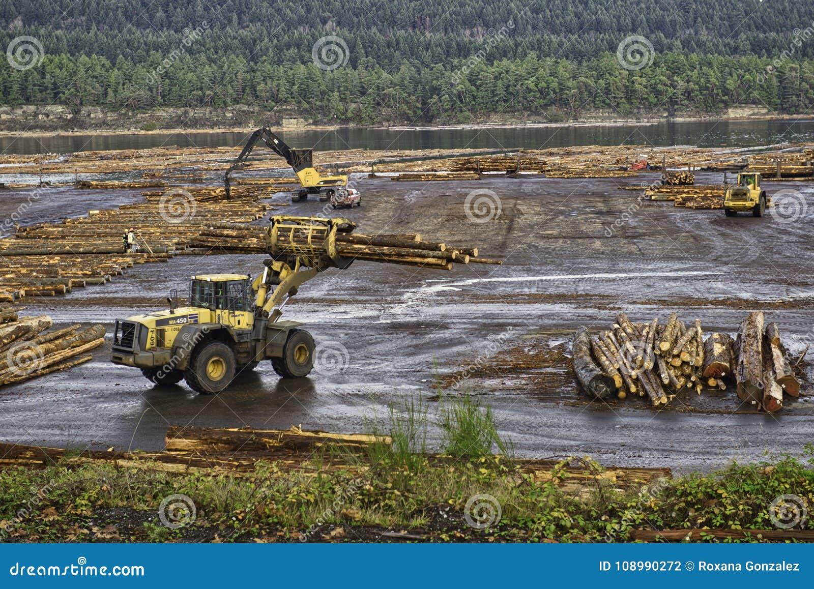 Hout en registreren de industrie in Ladysmith, het Eiland van Vancouver