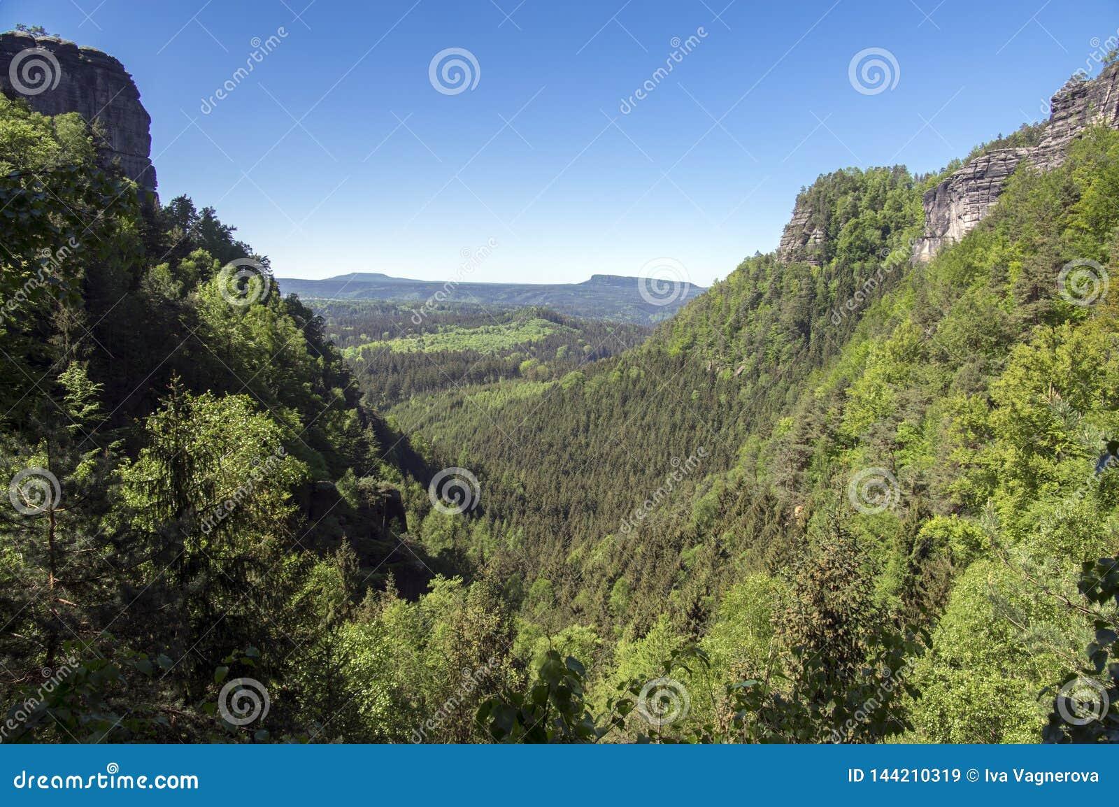 Hout en rotslandschap in Boheems Zwitserland, nationaal natuurgebied met verbazende aard, het Saksische Nationale Park van Zwitse