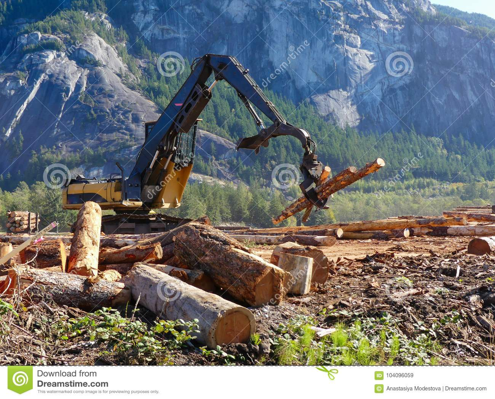 Houten de stapelszaken van het heftoestel bewegende hout