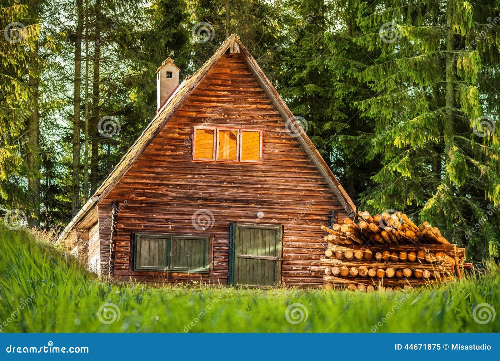 Houten huis in het bos stock illustratie afbeelding 44671875 - Meer mooie houten huizen ...