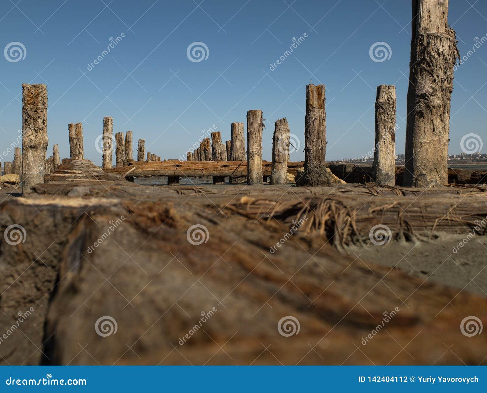 Houten meerpalen in het zand tegen het estuarium en de blauwe hemel kuyalnitsky estuarium