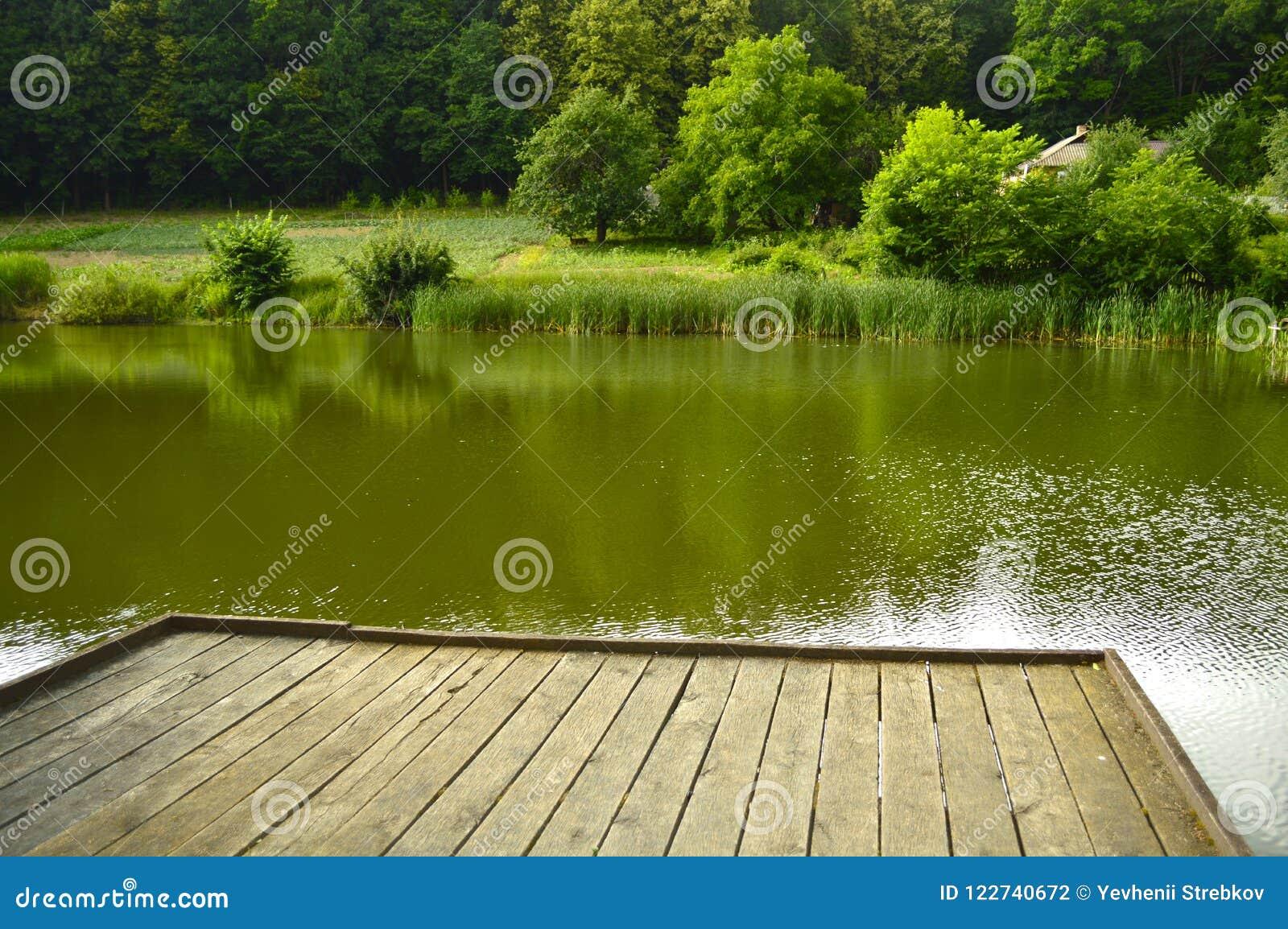 Houten pijler op een mooi bosmeer