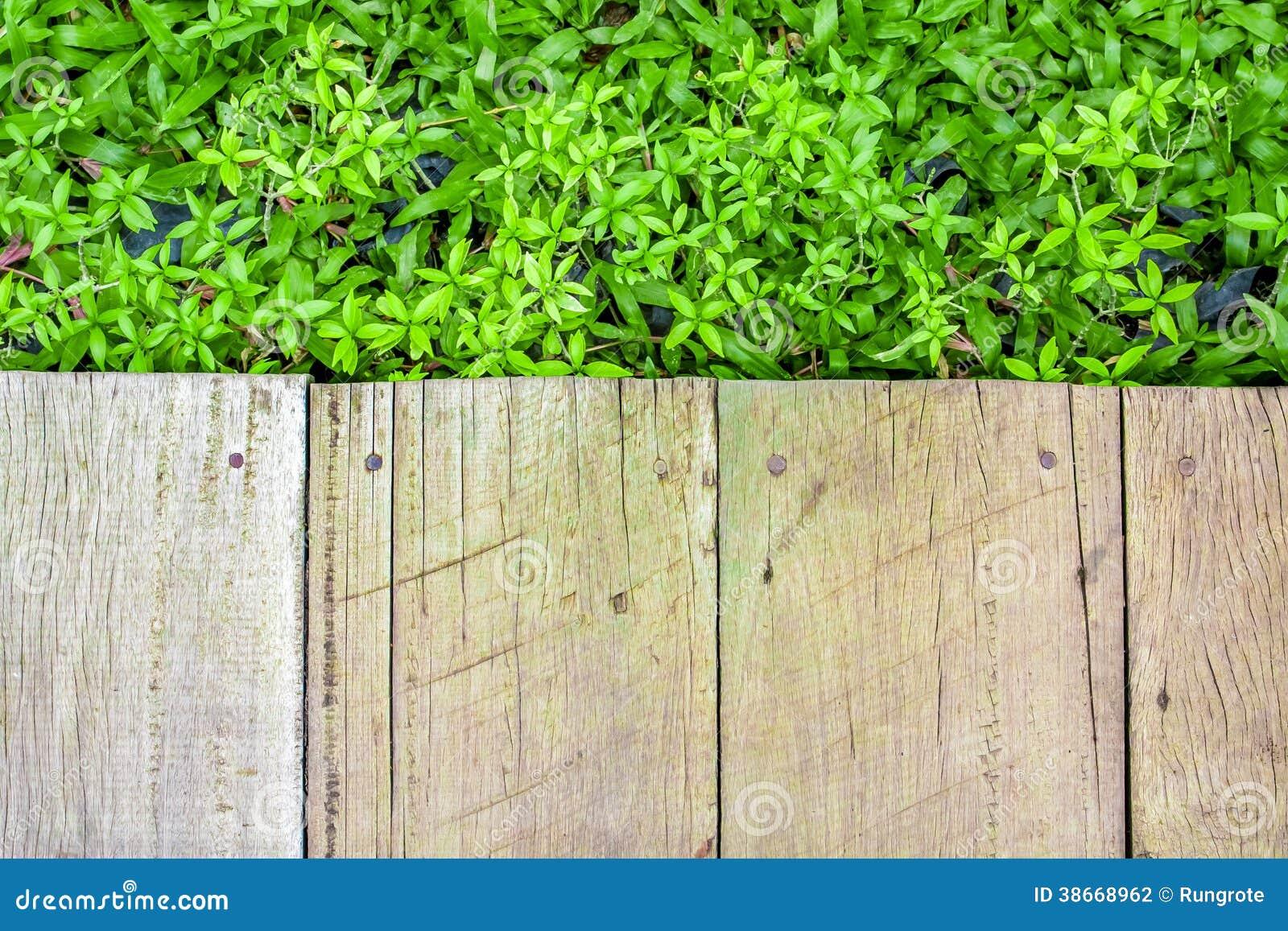 Houten vloer met groene installatieachtergrond