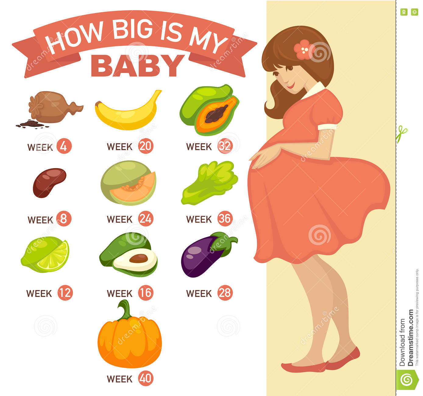 Baby weight chart stock illustrations 21 baby weight chart stock how big is my baby pregnant infographic how big is my baby pregnancy nvjuhfo Image collections