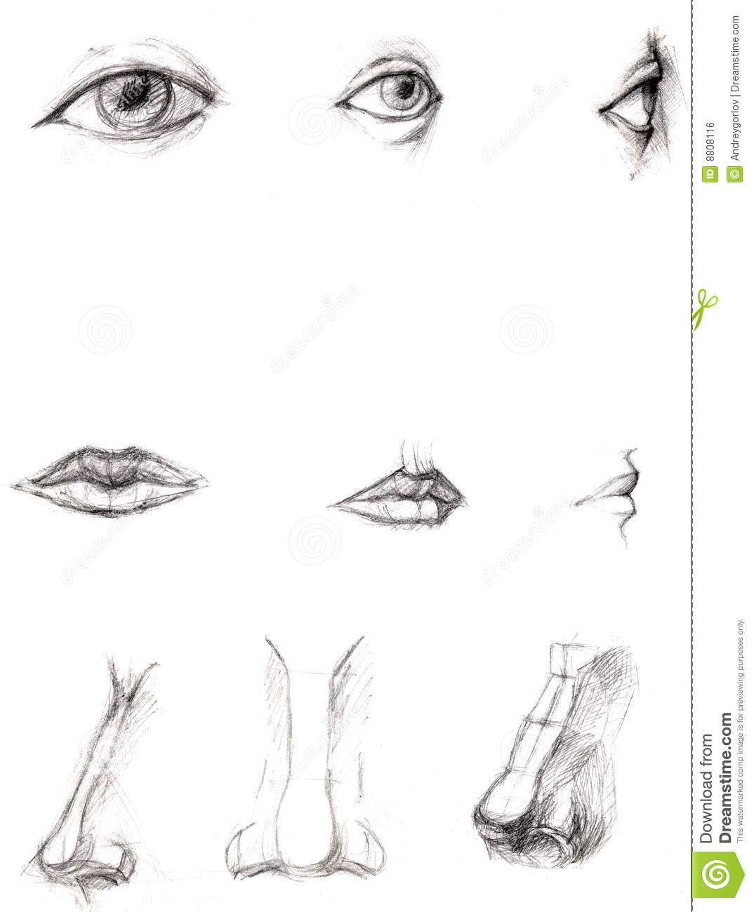 how to draw lips and nose
